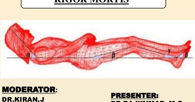 Rigor Mortis - AIR VOLATILE INTER FIND