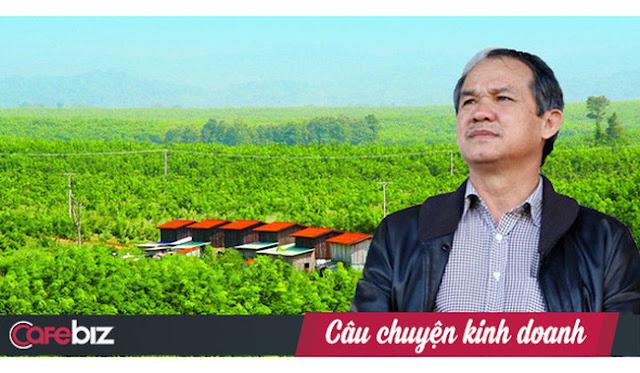 Đại gia Việt Nam chi 4 tỷ USD đầu tư nuôi bò và cao su tại Campuchia