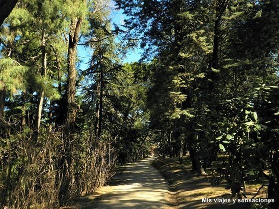 Parque Quinta de los Molinos. Madrid