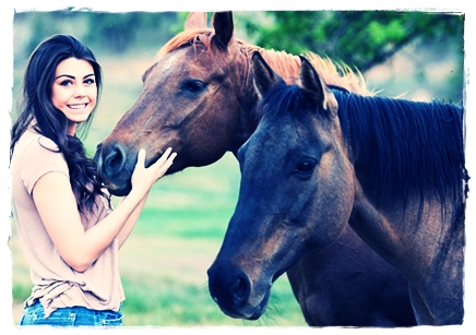 13 Ciri-Ciri Kuda