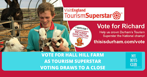 Vote for Hall Hill Farm as #TourismSuperstar Voting Draws To A Close