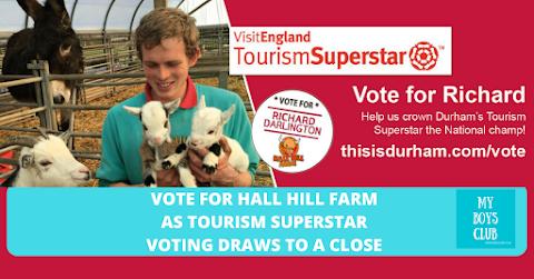 Vote for Hall Hill Farm as #TourismSuperstar Voting Draws To A Close