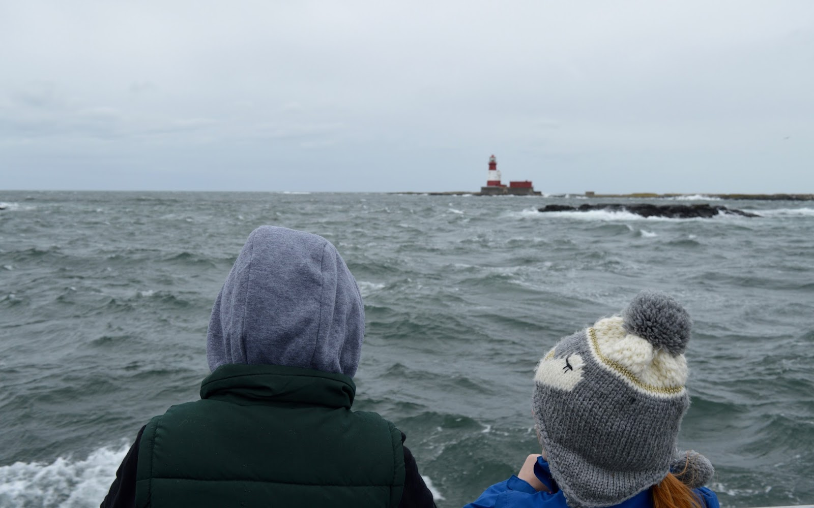 Farne Island Boat Trips with Serenity | A review and what to expect with kids - spotting seals