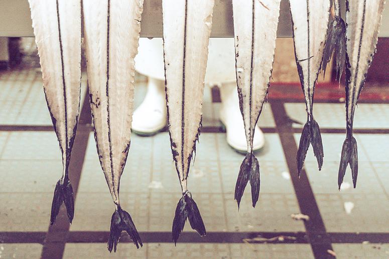 Peixe-espada Mercado dos Lavradores