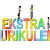 Download Panduan Ekstrakulikuler Kurikulum 2013 jenjang SD terbaru