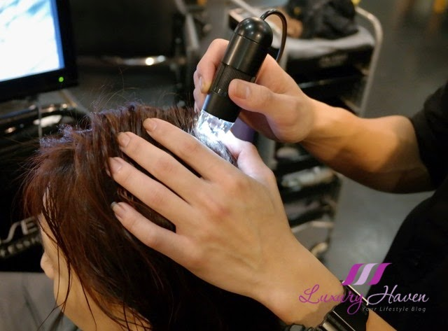 jass hair design scalp analysis