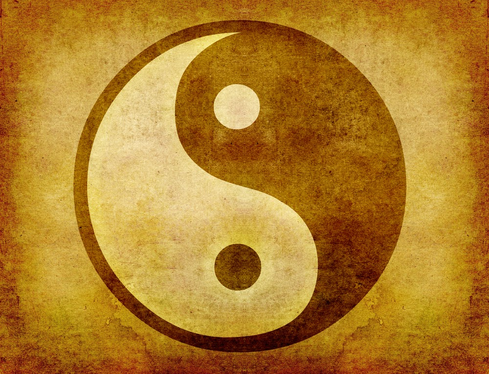 Meaning Of The Yin Yang Symbol Martial Fusion Cross Training System