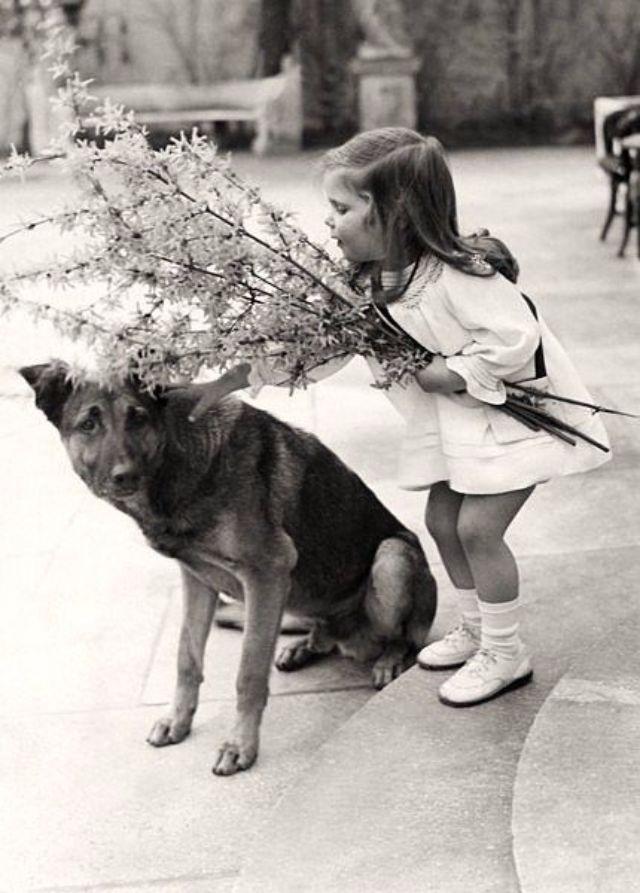 Helga with Prinz Hitleru0027s dog.  sc 1 st  Vintage Everyday & Murder in Hitleru0027s Bunker: Who Really Poisoned the Goebbels Children ...