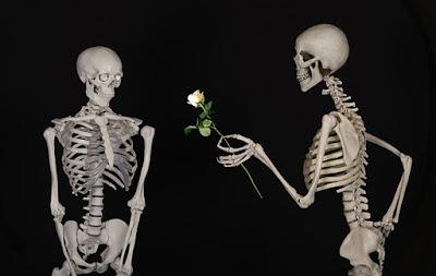 amor, huesos, rosas