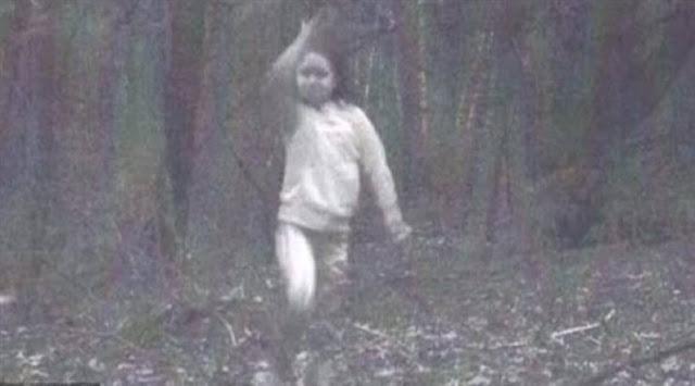 عائلة نصبت كاميرا في غابة .. وما وجدوه في الصور أصابهم بالرعب عن طريق الصدفة خلال استعدادهم لرحلة صيد ...هذا ما التقطته الكاميرا