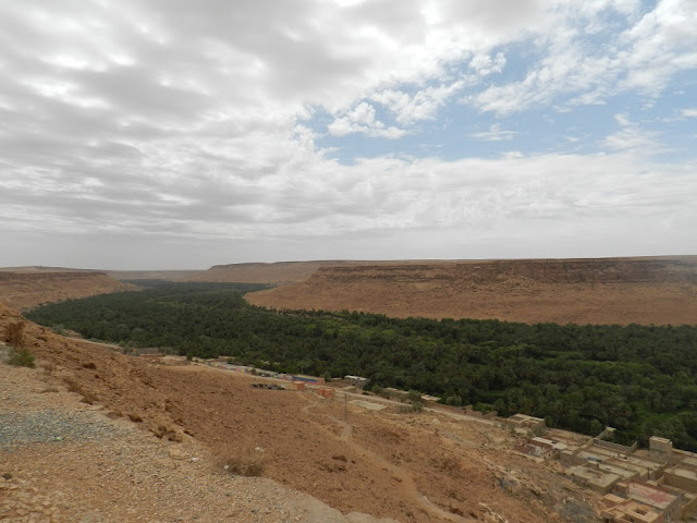 ziz valley oasi marocco