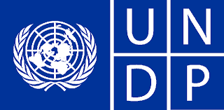 Job Opportunity at UNDP: Financial Management Analyst