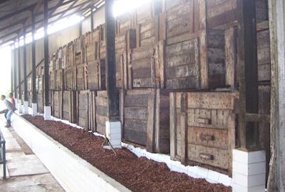 Fermentasi Kakao, Susunan Peti Fermentasi Kakao