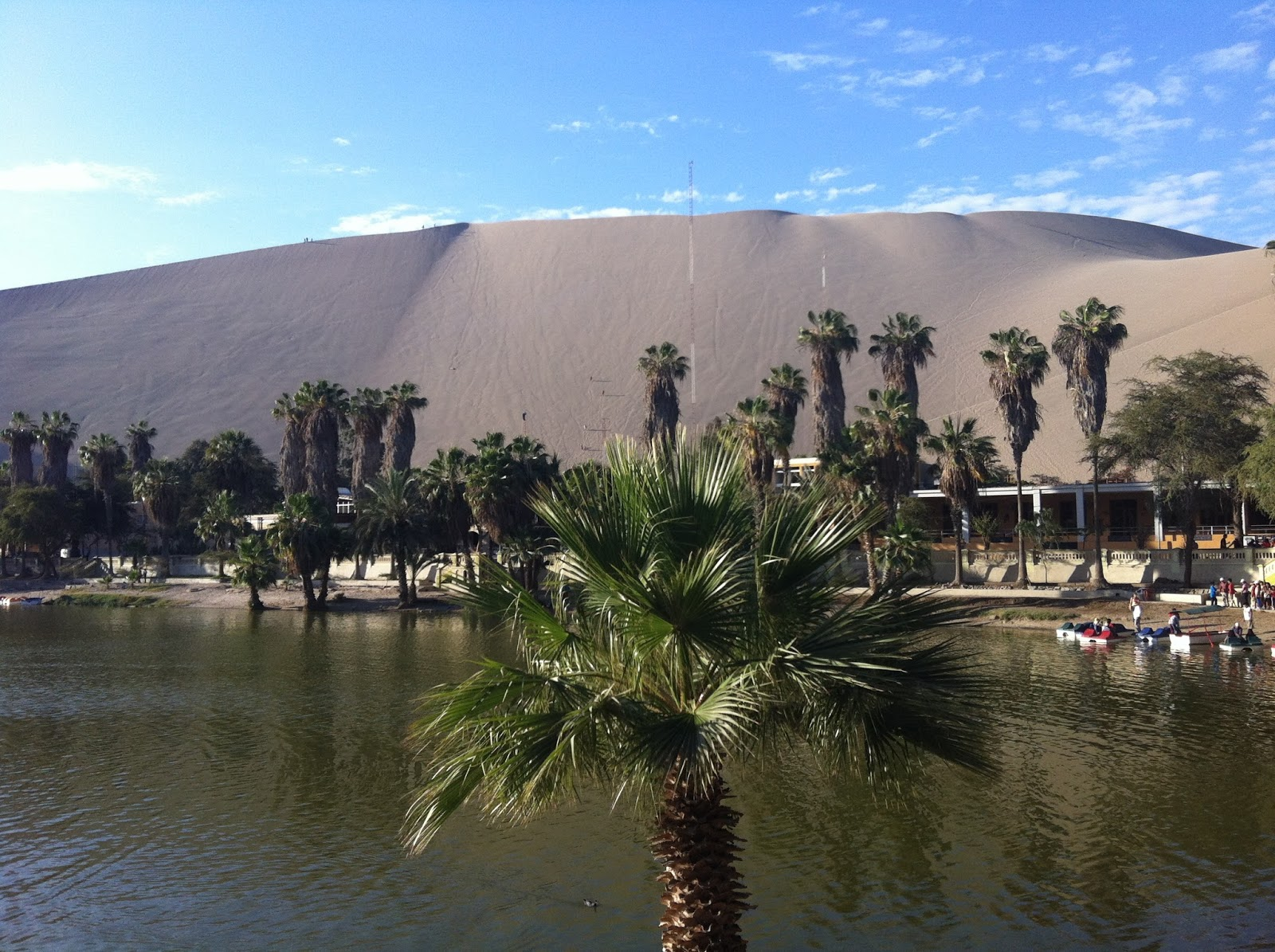 Oasis in Huacachina Peru