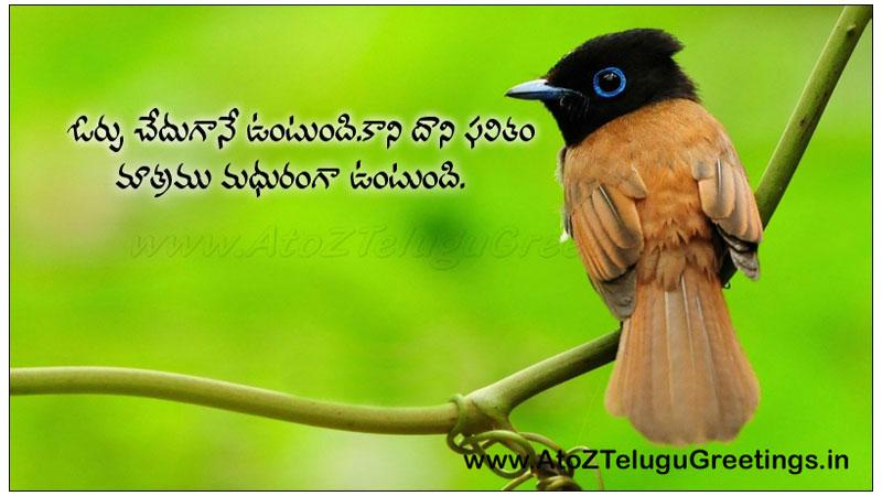 Telugu Latest Quotes Pictures Telugu Suktulu Telugu Quotes