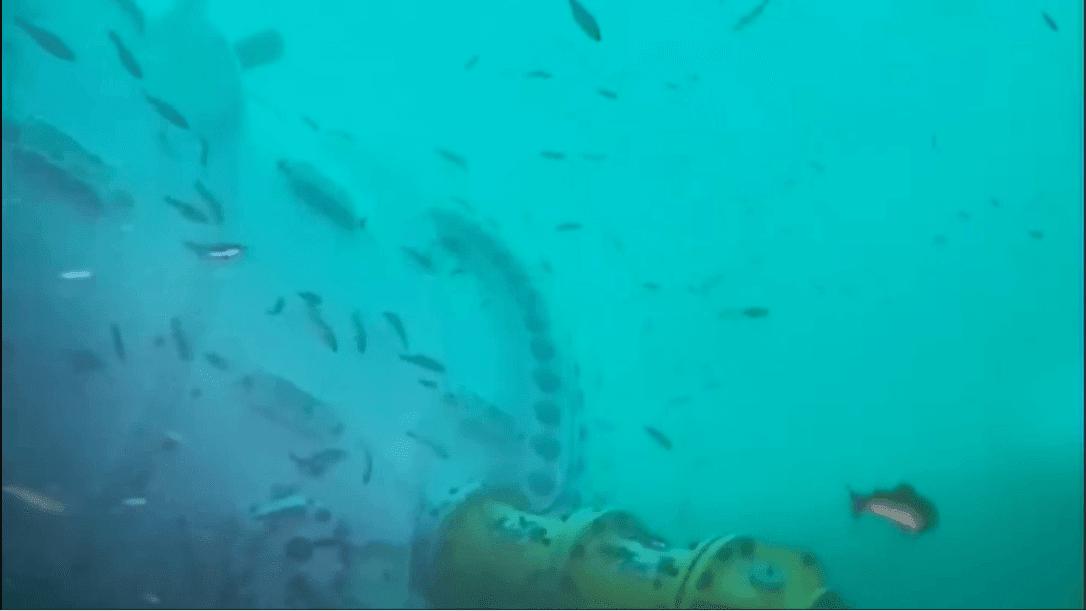 Microsoft's Underwater Data Center | Initiates Webcams On Underwater Datacentre