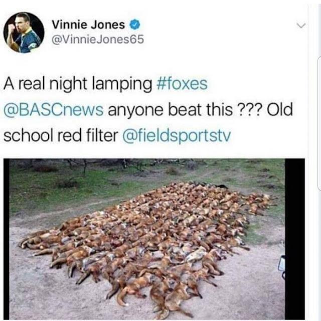 Vinnie Jones hace enfurecer a Internet con foto de 100 zorro