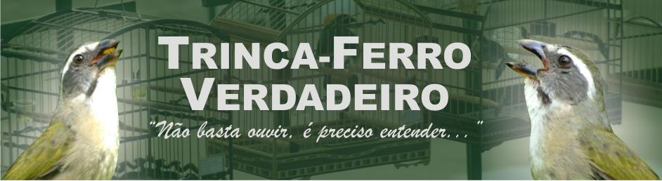 DE FERRO TORNEIO CANTO DE TRINCA BAIXAR