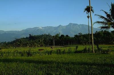 Gunung Argopura