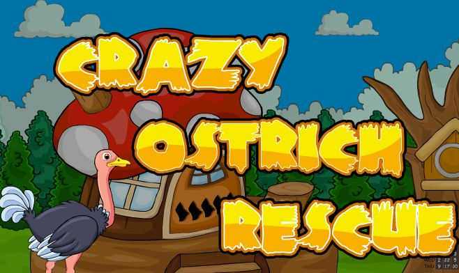Crazy Ostrich Rescue Walk…