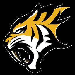 logo esport macan