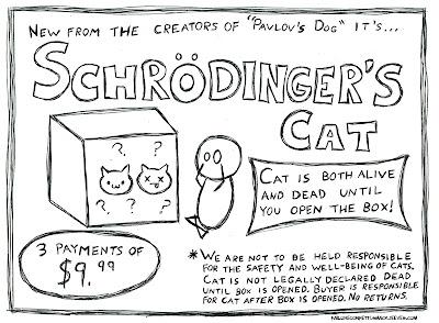 Cake Guru: Schrodinger's Cat Cake