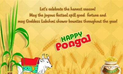 Business political job notifications technologies pongal birthday greeting cards wallpapers makar sankranti ecards happy makar sankranti ecards searches related to happy pongal 2018 wishes imagespongal m4hsunfo