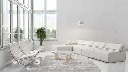 Room Background White 1
