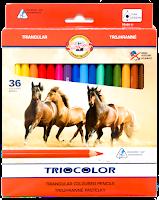 Kredki Triocolor 36
