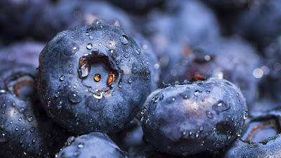 wallpaper buah blueberry