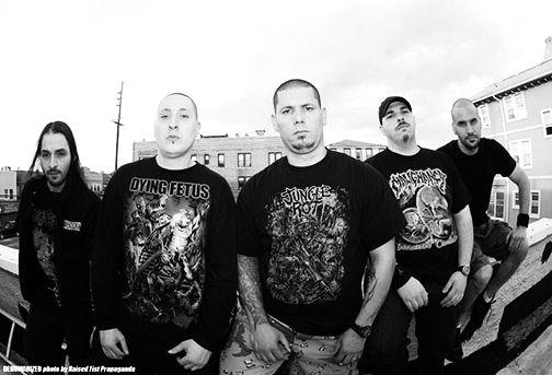 defeated sanity the parasites lyrics