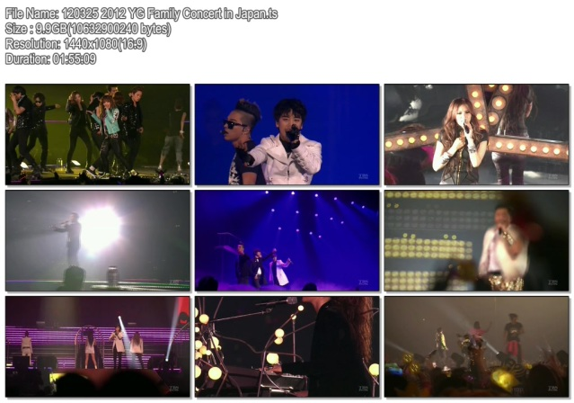 Download Konser KPop YG Family Concert in Japan