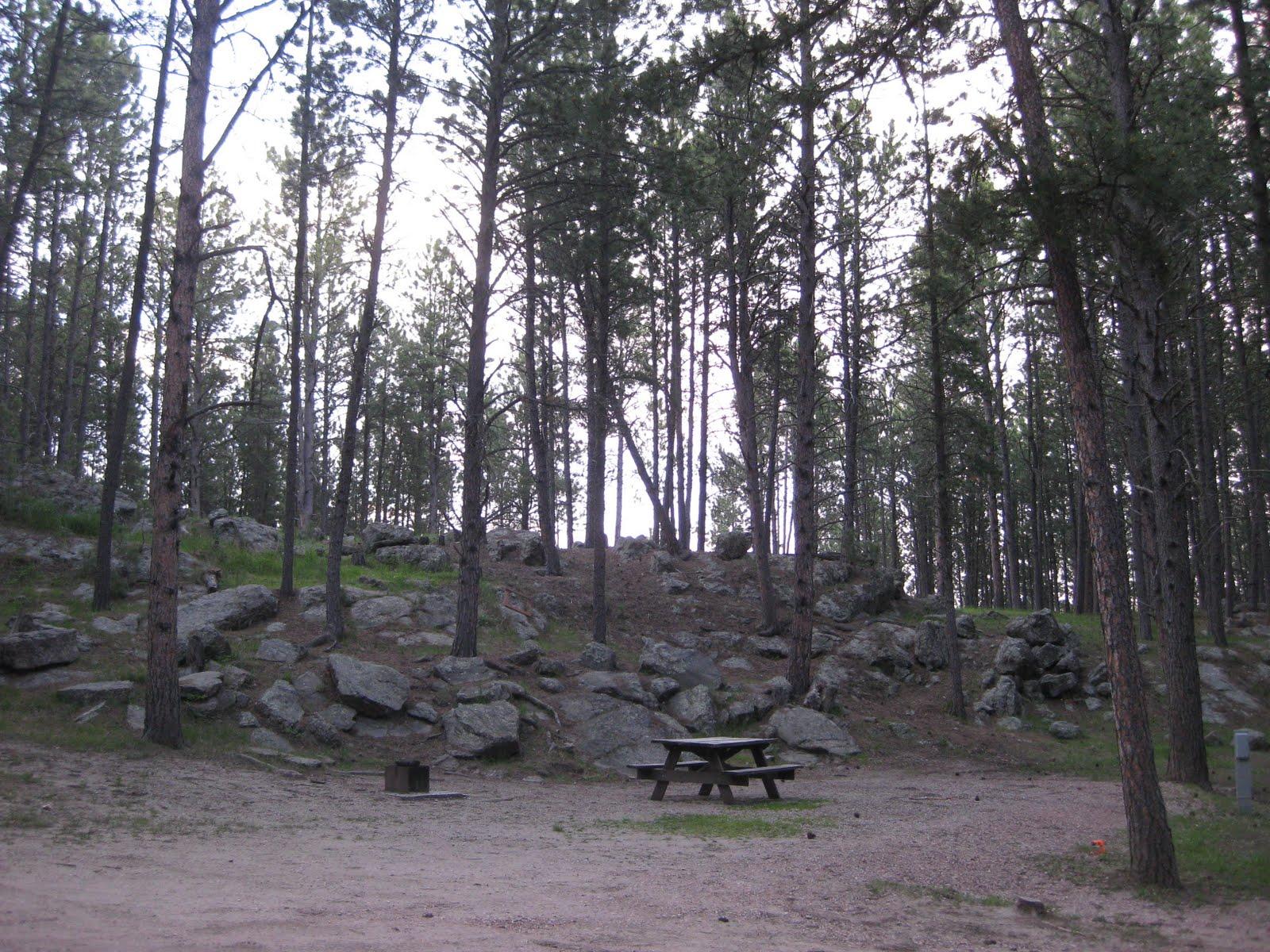 Campgroundcrazy Big Pine Campground Custer South Dakota