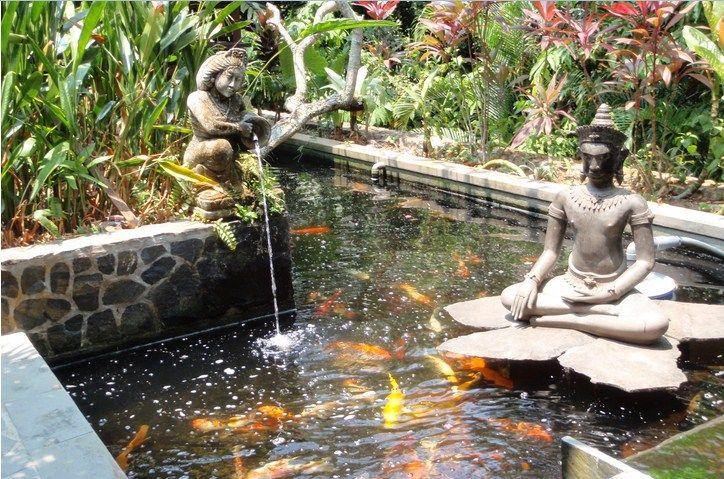 Contoh Kolam Ikan Minimalis