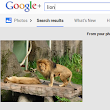Unlabeled Object Recognition in Google+