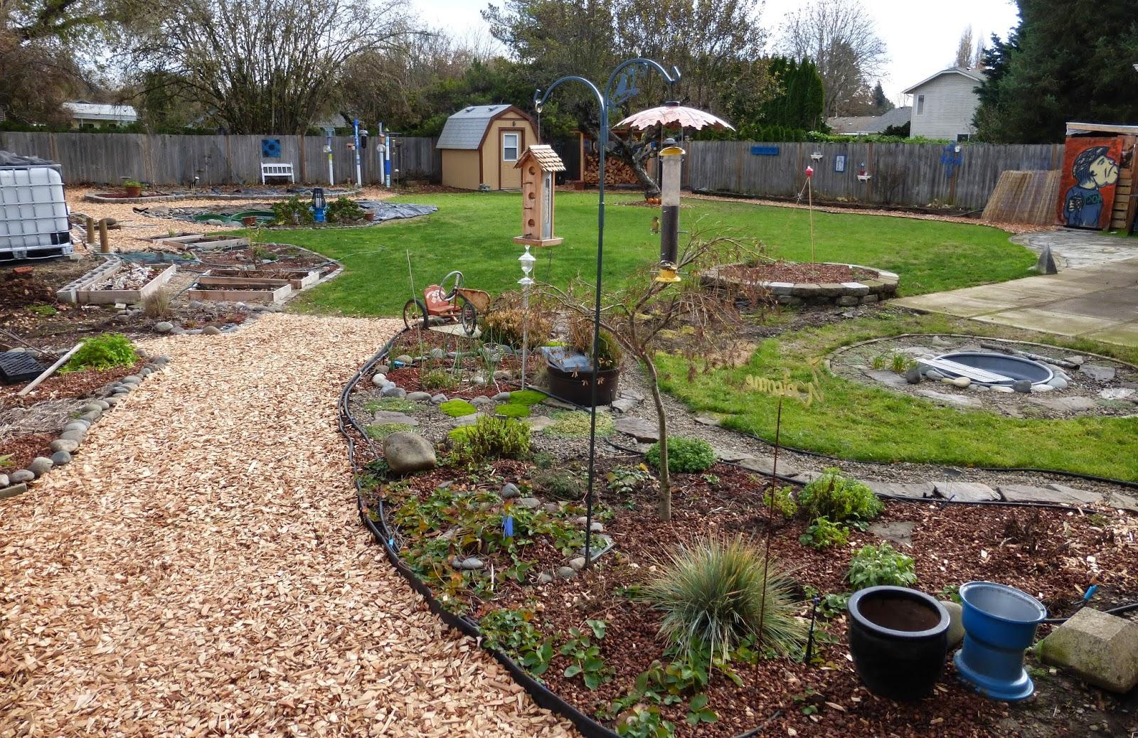Creating the 1/4 acre garden