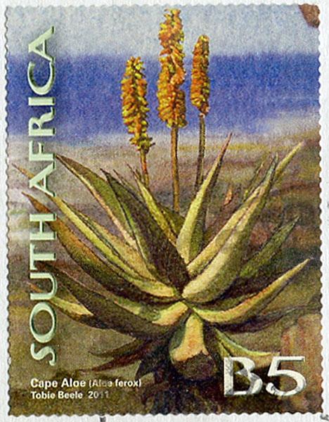 Arbre D'afrique En 4 Lettres : arbre, d'afrique, lettres, Boîte, Lettres, Monde:, Lettre, D'Afrique
