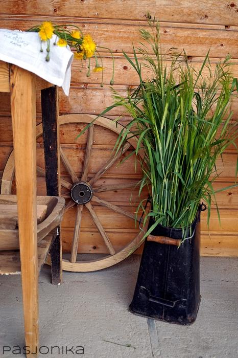 aranżacja z trawami polnymi