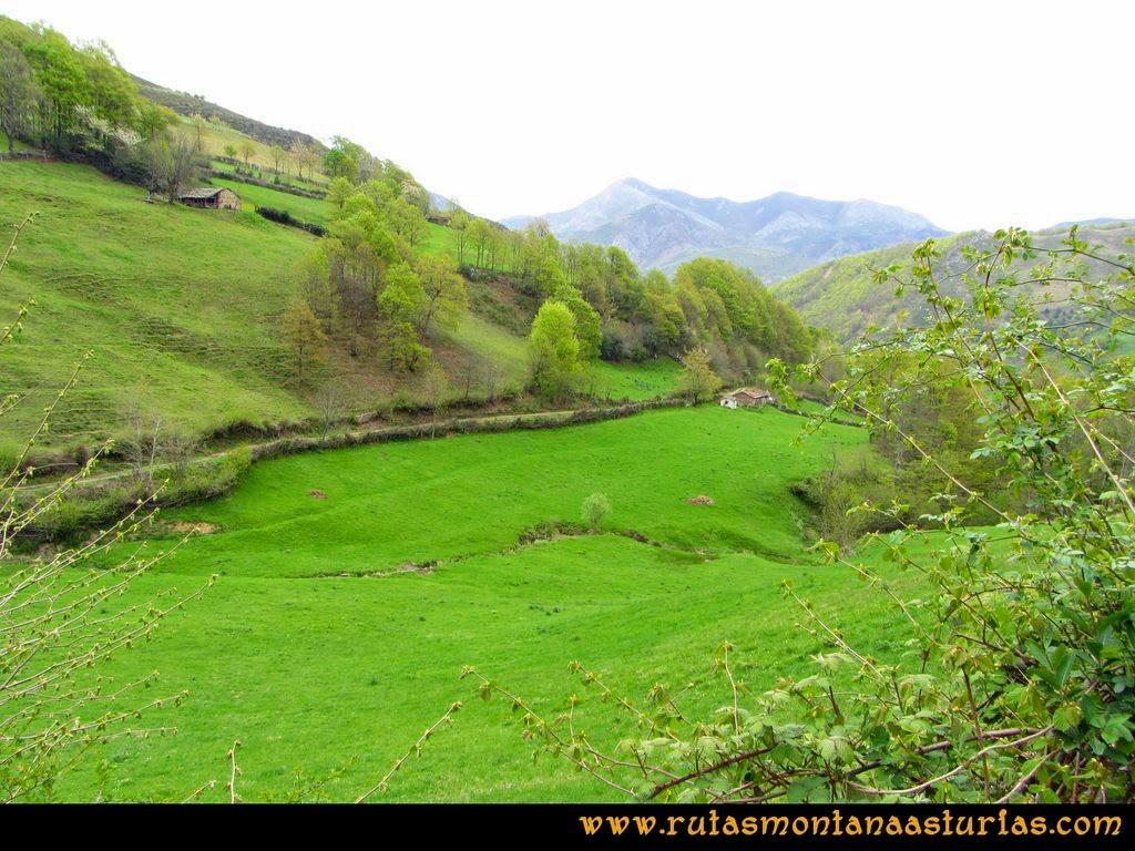 Ruta Peña Redonda: Camino hacia el Molín