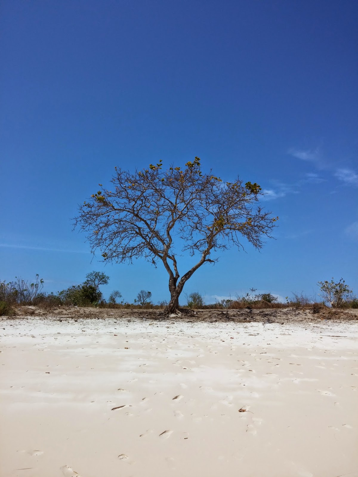 Pesona Pulau-pulau kecil dari Tanjung Luar, Lombok Timur