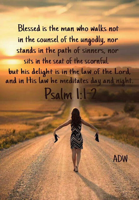 Blessed is the man who does not walk in the counsel of the wicked or stand in the way of sinners or sit in the seat of mockers.