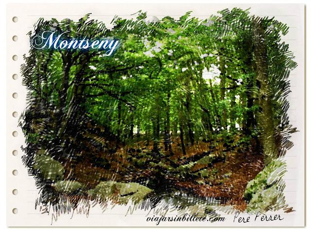 Montseny-viajarsinbillete