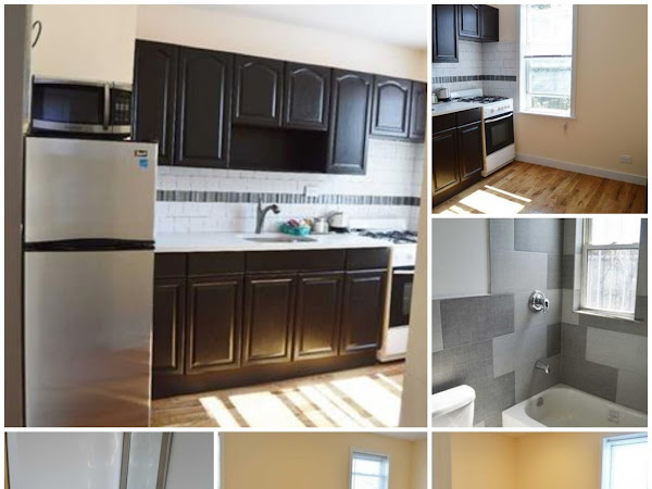 1BR Apartment Vouchers accepted 11451