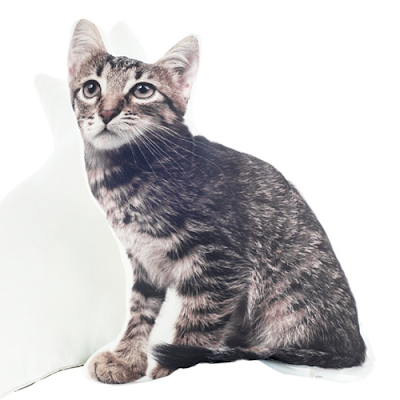 cojín con forma de gato