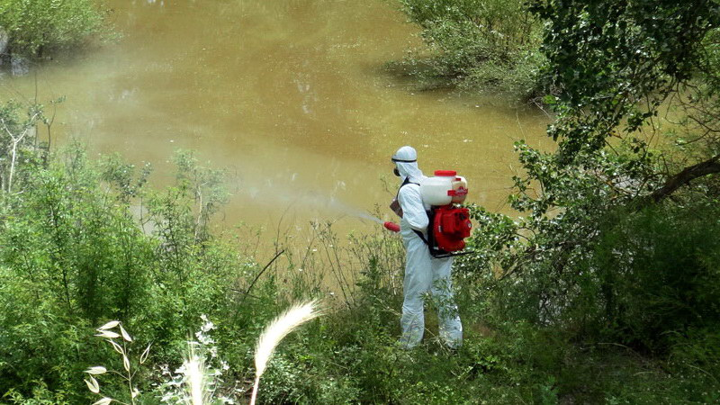 Ξεκίνησαν οι δράσεις για την καταπολέμηση των κουνουπιών στην Περιφέρεια ΑΜ-Θ