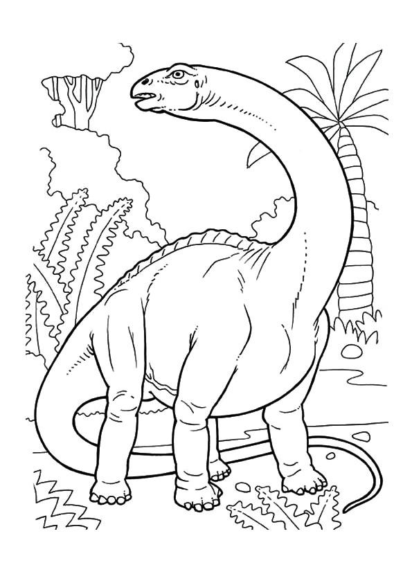 Desenhos De Dino Catrak Para Colorir E Imprimir Colorironline Com