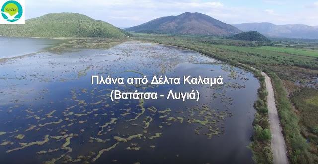 Βίντεο με drone στο Δέλτα Καλαμά (Βατάτσα - Λυγιά)