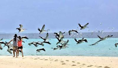 Pantai Ngur Tavur