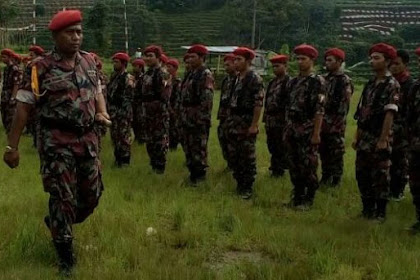 Komandan Kokam Muhammadiyah: Gebuk Saja Tjiptaning Pak Jokowi, Berani Tidak?