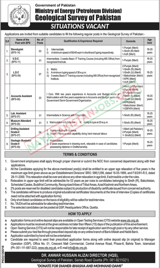 Latest Vacancies Announced in Ministry Of Energy Petroleum Division Govt of Pakistan 30 September 2018 - Naya Pak Jobs
